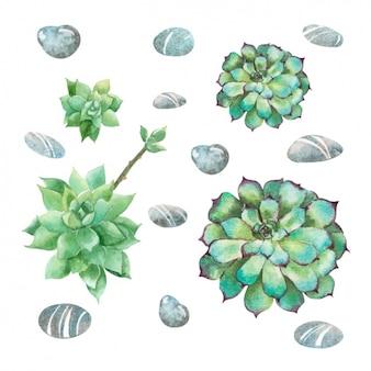 Groene bloemen collectie