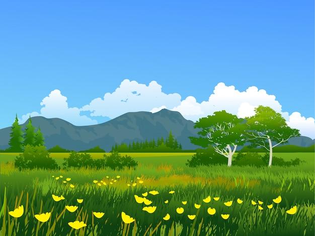 Groene bloemrijke weide dichtbij berg