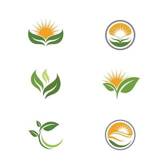 Groene boom blad ecologie natuur element vector design