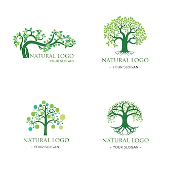 Groene boom logo ontwerp natuurlijk en abstract blad
