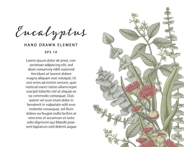 Groene botanische hand getrokken illustratie met voorbeeldtekstsjabloon