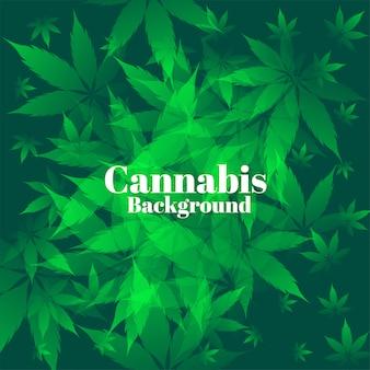 Groene cannabisbladeren op bosachtergrond