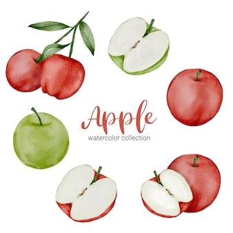 Groene en rode appel in aquarel collectie, vol fruit en in tweeën gesneden