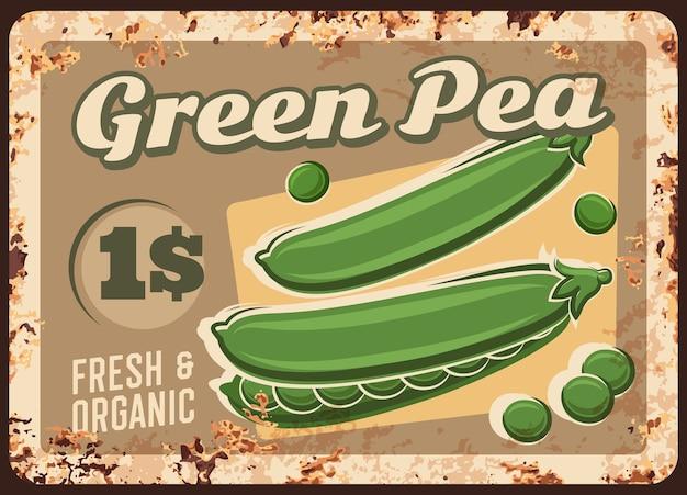 Groene erwten roestige metalen plaat, prijskaartje voor boerderijmarkt, vintage roest tinnen bord.