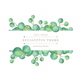 Groene eucalyptus aquarel illustratie