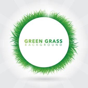 Groene gras krans achtergrond
