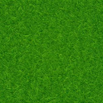 Groene gras textuur achtergrond