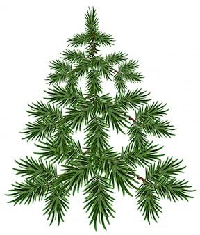 Groene kerstboom. pluizige spar. groene pijnboom