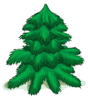 Groene kerstmisspar. geïsoleerd op wit