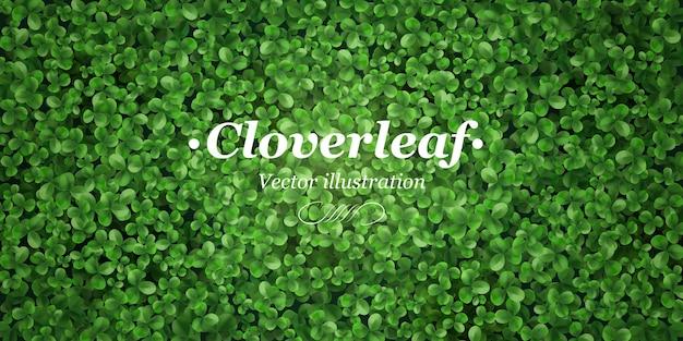 Groene klaverbladachtergrond