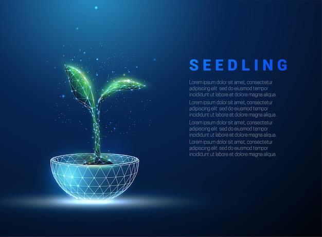Groene plant ontkiemen groeien in blauwe pot. laag poly-stijl ontwerp.