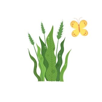 Groene tarweplant in de buurt van kleurrijk vlinderpictogram. cartoon van groene tarwe plant in de buurt van kleurrijke vlinder vector pictogram voor webdesign geïsoleerd op een witte achtergrond