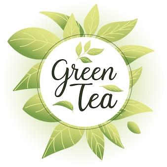 Groene thee met bladeren rond cirkel, drinkt het hete porselein ceramische engels van de ontbijtdrank en de illustratie van het uitnodigingsthema