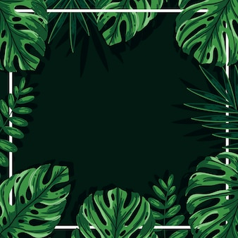 Groene tropische bladeren achtergrond met frame