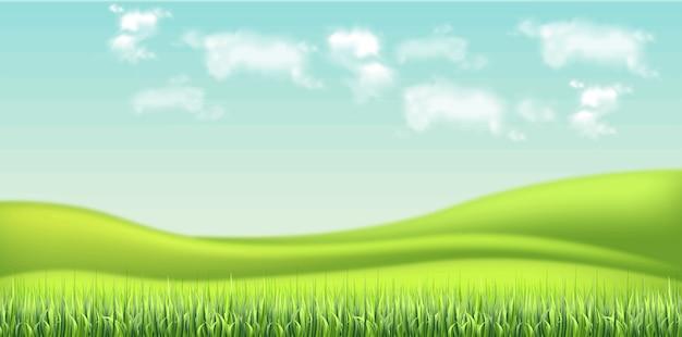 Groene veld en hemelachtergrond