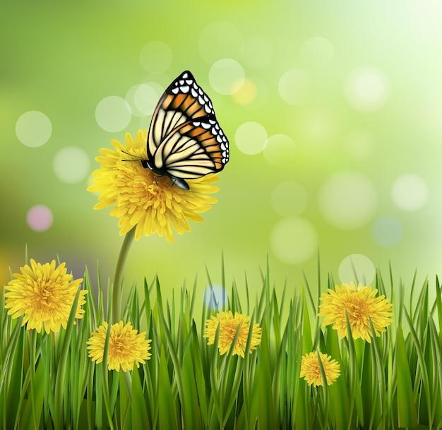 Groene zomer achtergrond met paardebloemen en een vlinder.