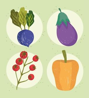 Groenten eten biologische radijs aubergine peper en tomaten icon set illustratie