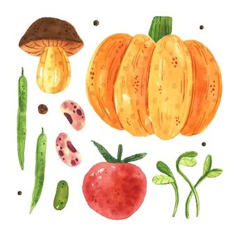 Groenten illustraties, set. aquarel illustratie. rauw vers gezond voedsel.