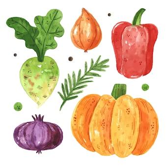Groenten illustraties, set. pompoen, groen, radijs, paprika, ui. aquarel illustratie. rauw vers gezond voedsel. veganistisch, vegetarisch. oogst. ontwerpelementen geïsoleerd op een witte achtergrond.