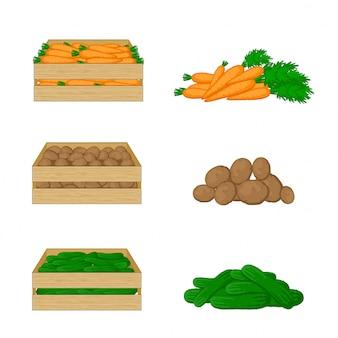 Groenten in houten dozen die op witte reeks worden geïsoleerd