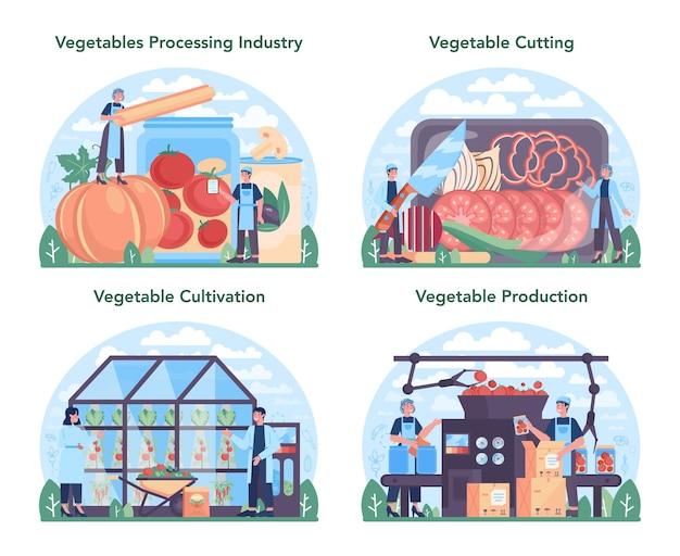 Groenten landbouwindustrie set idee van landbouw en teelt