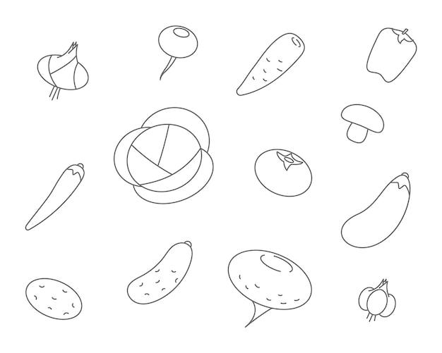 Groenten lijn pictogrammen. set vector icoon van plantaardige kool, wortelen, komkommer, knoflook, uien, paprika.