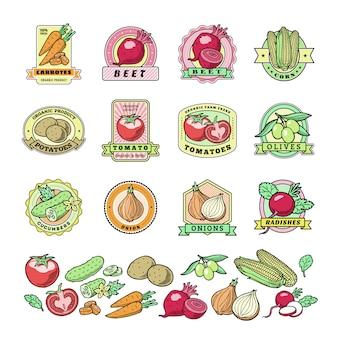 Groenten logo gezond plantaardig logo tomaat en wortel voor vegetariërs biologisch voedsel in kruidenierswinkel illustratie begroeide badges set geïsoleerd op een witte achtergrond