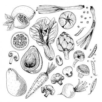 Groenten ontwerpt collectie