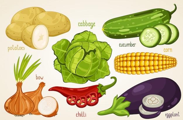 Groentenmix. biologisch voedsel, boerderij.