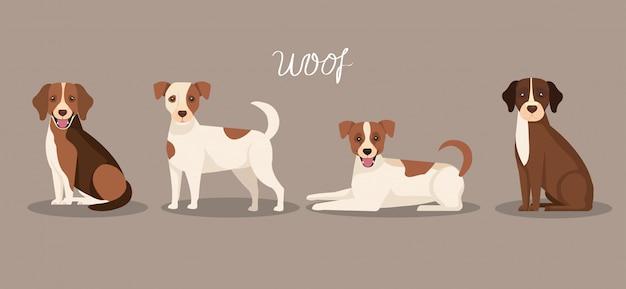 Groep honden dieren pictogrammen