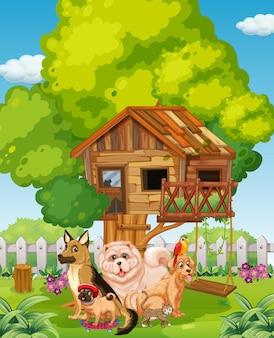 Groep huisdier in de tuinscène