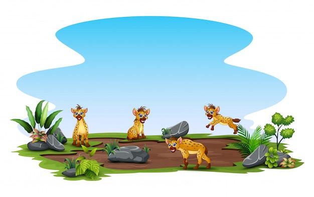 Groep hyena die van aard buiten genieten