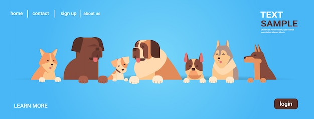Groep rasechte honden harige menselijke vrienden thuis huisdieren concept cartoon dieren portret
