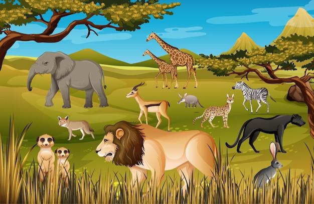 Groep van wilde afrikaanse dieren in de bosscène