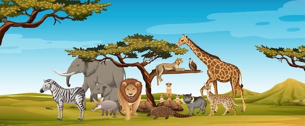 Groep wilde afrikaanse dieren in de dierentuinscène