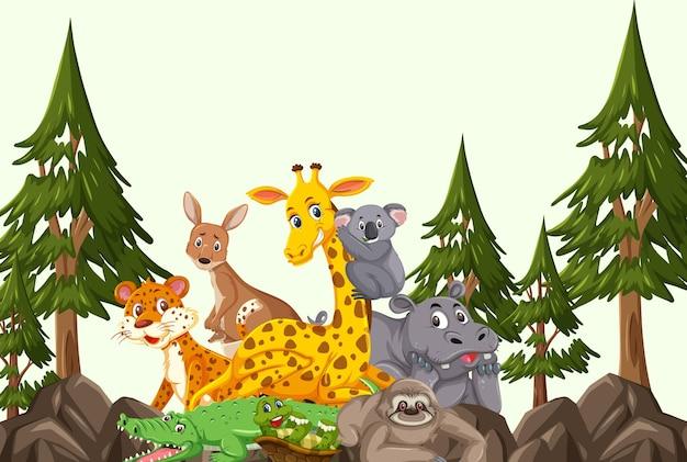 Groep wilde dieren in de bosscène