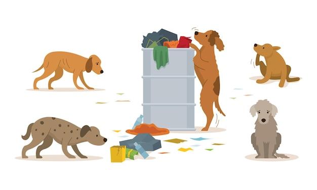 Groep zwerfhonden rommelt in een vuilnisbak