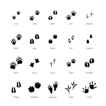 Groot aantal dieren en vogelsilhouetten van stappenafdrukken op wit
