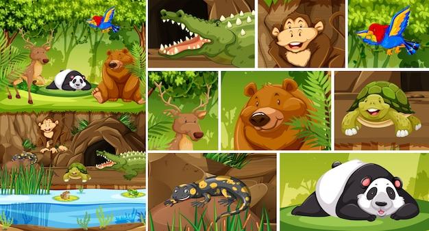 Groot dier in de natuur