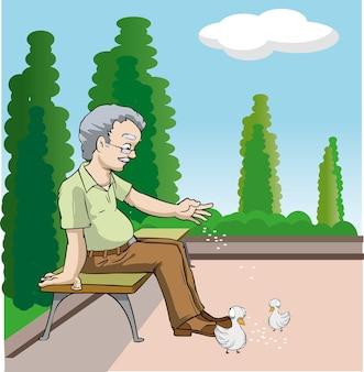 Grootvader alleen in het park de duiven voeren
