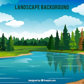 Grote achtergrond van bos met meer