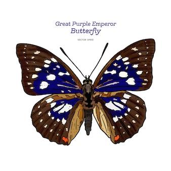 Grote paarse keizer, hand tekenen schets vector.