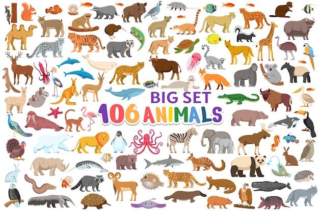 Grote reeks dieren geïsoleerd op wit