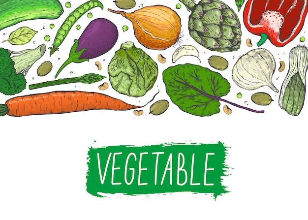 Grote reeks groenten in een realistische schetsstijl. gezond eten, natuurlijk product.