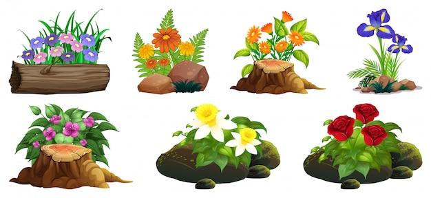 Grote reeks kleurrijke bloemen op rotsen en hout