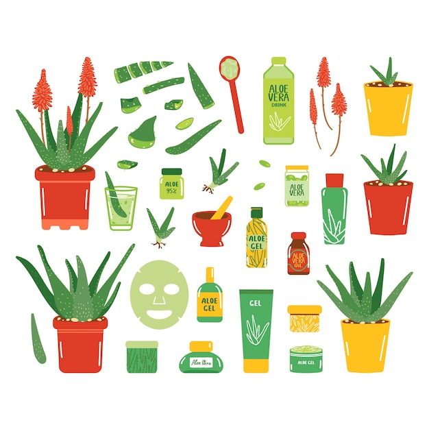Grote set aloë vera producten. potplanten, cosmetische en medische producten. collectie geïsoleerd op een witte achtergrond. vectorillustratie in vlakke stijl.