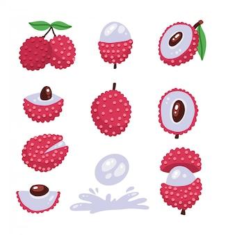Grote set als van lychee - tropisch fruit. moderne vlakke stijl illustrstion. zomer eten in verschillende standpunten en hoeken