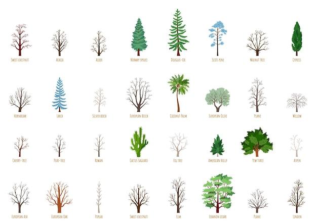 Grote vector cartoon set met winter bomen geïsoleerd