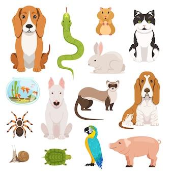 Grote vectorreeks verschillende huisdieren. katten, honden, hamster en andere huisdieren in cartoon-stijl