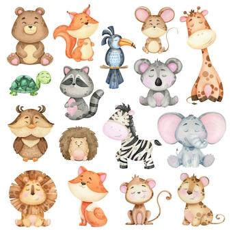 Grote verzameling aquarel dieren uit het bos en de jungle. illustraties voor afdrukken
